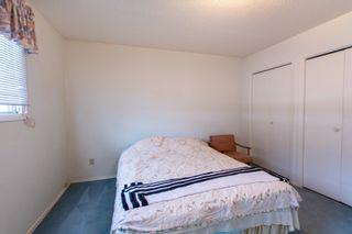 Photo 23: 11428 37B Avenue in Edmonton: Zone 16 House for sale : MLS®# E4262550