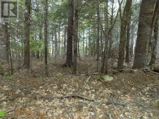 Photo 2: Lots 36 & 37 Hidden Hills Road in Labelle: Vacant Land for sale : MLS®# 202116791