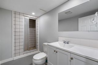 Photo 34: 509 ALEXANDER Crescent NW in Calgary: Rosedale Detached for sale : MLS®# A1091236
