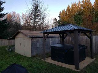 "Photo 29: 25103 DEWDNEY TRUNK Road in Maple Ridge: Websters Corners House for sale in ""WEBSTERS CORNER"" : MLS®# R2517450"