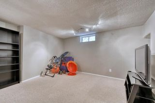 Photo 21: 41 Edgeford Road NW in Calgary: Edgemont Detached for sale : MLS®# A1025189