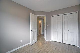 Photo 20: 16044 38 street NW in Edmonton: Zone 03 House for sale : MLS®# E4248402
