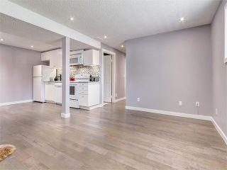 Photo 30: 75 WHITMAN Crescent NE in Calgary: Whitehorn House for sale : MLS®# C4074326