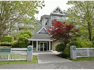 """Photo 23: 205 5556 201A Street in Langley: Langley City Condo for sale in """"Michaud Gardens"""" : MLS®# F1321121"""