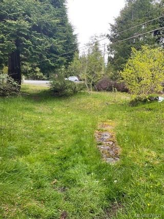 Photo 9: 4460 Byng Rd in : NI Port Hardy House for sale (North Island)  : MLS®# 876932