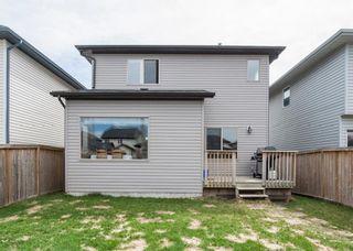 Photo 26: 238 ELGIN Manor SE in Calgary: McKenzie Towne House for sale : MLS®# C4115114