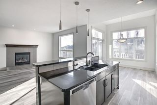 Photo 15: 45 Pantego Link NW in Calgary: Panorama Hills Detached for sale : MLS®# A1095229