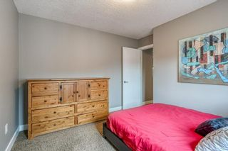 Photo 25: 730 CANOE Avenue SW: Airdrie Detached for sale : MLS®# C4303530