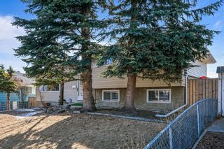 Main Photo: 211 72 Avenue NE in Calgary: Huntington Hills Detached for sale : MLS®# A1080354