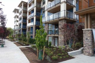 """Photo 23: 105 20673 78 Avenue in Langley: Willoughby Heights Condo for sale in """"Grayson"""" : MLS®# R2444196"""
