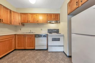 Photo 10: 330 2390 MCGILL Street in Vancouver: Hastings Condo for sale (Vancouver East)  : MLS®# R2622246