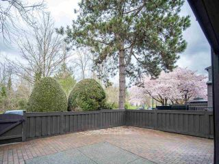 """Photo 13: 15 3220 ROSEMONT Drive in Vancouver: Champlain Heights Townhouse for sale in """"ASPENWOOD II"""" (Vancouver East)  : MLS®# R2566303"""