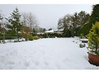 Photo 18: 3537 Savannah Ave in VICTORIA: SE Quadra House for sale (Saanich East)  : MLS®# 750444