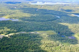 Photo 39: 16536 Rainy Lake in Fort Frances: Vacant Land for sale : MLS®# TB212374