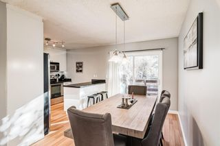 Photo 18: 508 Mckinnon Drive NE in Calgary: Mayland Heights Detached for sale : MLS®# A1154496