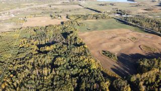 Photo 6: 51360 RGE RD 223: Rural Strathcona County House for sale : MLS®# E4266301