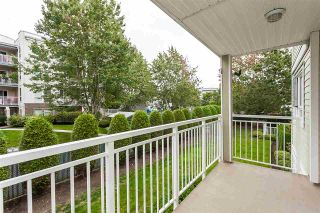 "Photo 19: 205 20189 54 Avenue in Langley: Langley City Condo for sale in ""Catalina Gardens"" : MLS®# R2403720"
