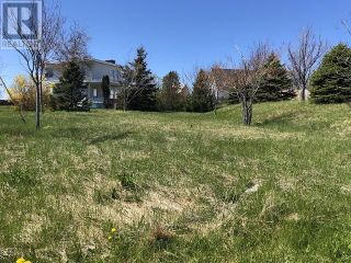 Photo 5: 65 Ohio Drive in Stephenville: Vacant Land for sale : MLS®# 1234009