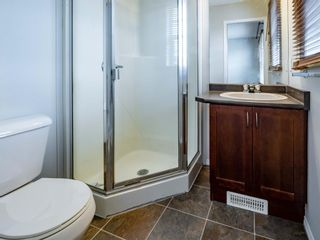Photo 12: 326 Elgin Place SE in Calgary: McKenzie Towne Semi Detached for sale : MLS®# A1136926
