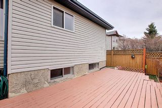 Photo 43: 1077 Country  Hills Circle NW in Calgary: Country Hills Detached for sale : MLS®# A1104987