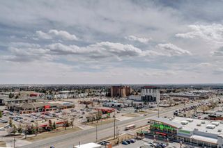 Photo 29: 1910 8710 Horton Road SW in Calgary: Haysboro Apartment for sale : MLS®# A1148090