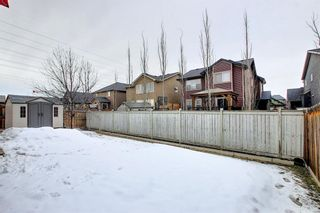 Photo 48: 164 Aspenmere Close: Chestermere Detached for sale : MLS®# A1130488