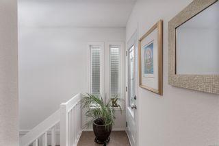 Photo 24: 986 Annie St in : SE Quadra Half Duplex for sale (Saanich East)  : MLS®# 862039
