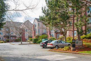 Photo 23: 303 835 Selkirk Ave in : Es Kinsmen Park Condo for sale (Esquimalt)  : MLS®# 886078