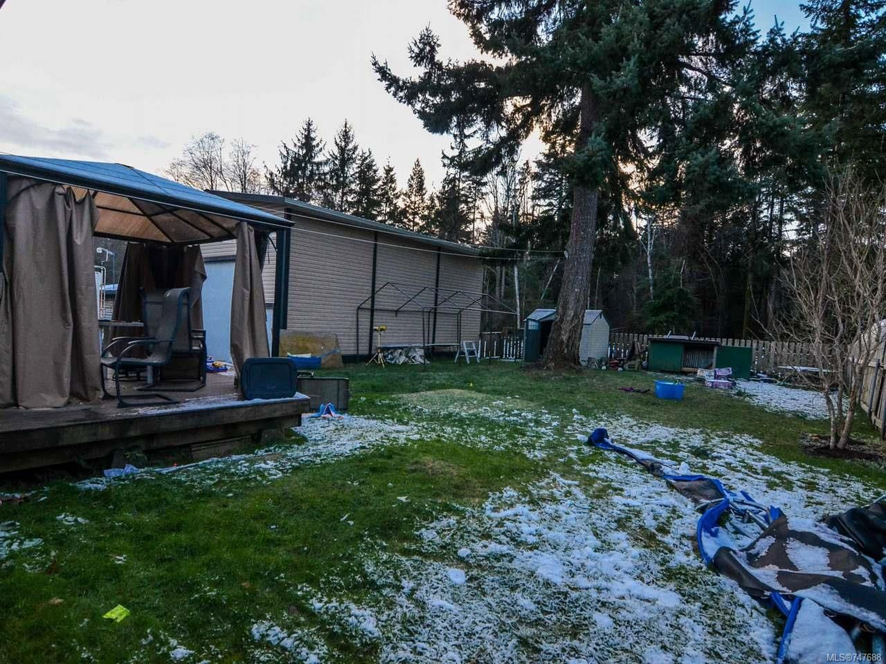 Photo 15: Photos: 228 Crawford Rd in CAMPBELL RIVER: CR Campbell River South House for sale (Campbell River)  : MLS®# 747688