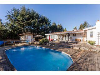 Photo 9: 16910 23RD Avenue in Surrey: Pacific Douglas House for sale (South Surrey White Rock)  : MLS®# R2136702
