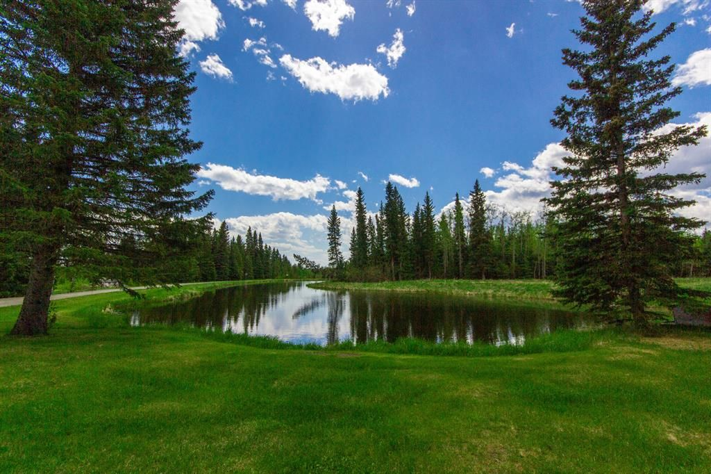 Main Photo: 231057 Rge Rd 54: Bragg Creek Residential Land for sale : MLS®# A1118605