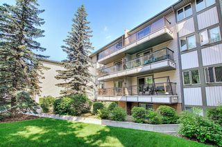 Photo 9: 303 130 25 Avenue SW in Calgary: Mission Apartment for sale : MLS®# A1023034