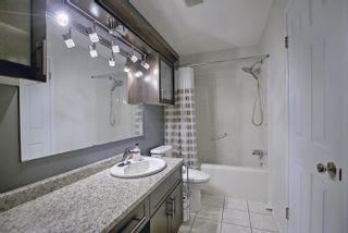 Photo 23: 12323 43 Street in Edmonton: Zone 23 House for sale : MLS®# E4258897