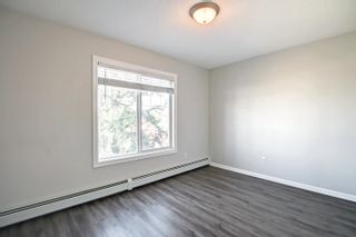 Photo 31: 313 13710 150 Avenue in Edmonton: Zone 27 Condo for sale : MLS®# E4261599
