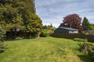 Photo 17: 846 E 16TH Street in North Vancouver: Boulevard House for sale : MLS®# R2580959