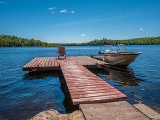 Photo 29: 1282 Woa Anstruther Lake View in North Kawartha: Rural North Kawartha House (Bungalow) for sale : MLS®# X5255516