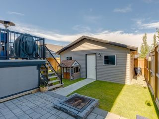 Photo 36: 258 NOLAN HILL Drive NW in Calgary: Nolan Hill Detached for sale : MLS®# A1018537