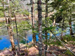 Photo 2: Lot VH-1 Highway 10 in Meisners Section: 405-Lunenburg County Vacant Land for sale (South Shore)  : MLS®# 202111350