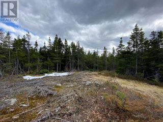 Photo 4: 0 New World Island Forestry Access Road in Summerford: Vacant Land for sale : MLS®# 1229207