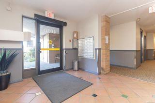 Photo 4: 402 4030 Quadra St in : SE High Quadra Condo for sale (Saanich East)  : MLS®# 884896