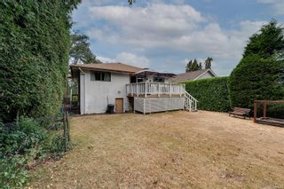 Photo 4: 3529 Savannah Ave in : SE Quadra House for sale (Saanich East)  : MLS®# 885273