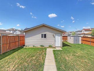Photo 40: 134 TARALEA Manor NE in Calgary: Taradale House for sale : MLS®# C4186744