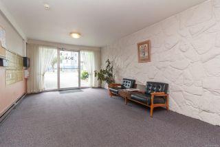 Photo 16: 202 904 Hillside Ave in : Vi Hillside Condo for sale (Victoria)  : MLS®# 874220