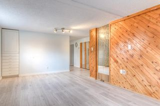 Photo 26: 2526 17 Street NW in Calgary: Capitol Hill Detached for sale : MLS®# A1100233