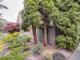 """Photo 31: 4379 ARBUTUS Street in Vancouver: Quilchena Townhouse for sale in """"Arbutus West"""" (Vancouver West)  : MLS®# R2581914"""