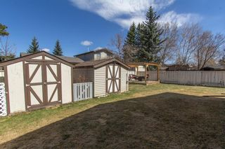 Photo 28: 421 Big Springs Drive SE: Airdrie Detached for sale : MLS®# A1099783