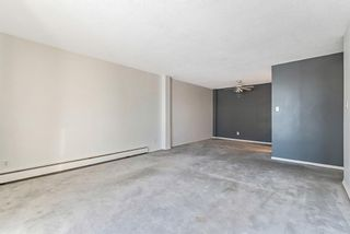 Photo 7: 15D 80 Galbraith Drive SW in Calgary: Glamorgan Apartment for sale : MLS®# A1058973