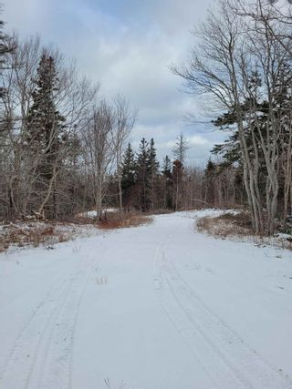 Photo 8: 2220 Shore Road in Delaps Cove: 400-Annapolis County Vacant Land for sale (Annapolis Valley)  : MLS®# 202101419