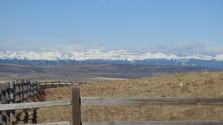 Photo 4: SW 36-20-3W5: Rural Foothills County Residential Land for sale : MLS®# A1101413