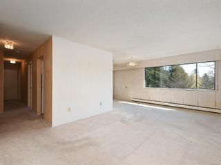 Photo 4: 305 3880 Shelbourne St in : SE Cedar Hill Condo for sale (Saanich East)  : MLS®# 872259